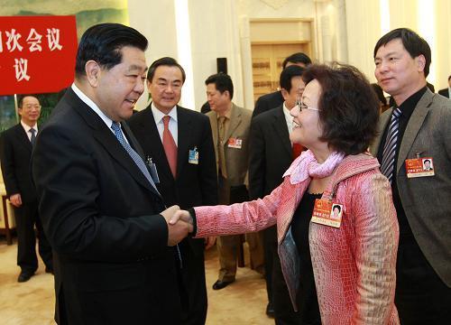 贾庆林参加台湾代表团审议