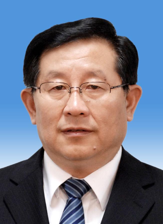 中国人民政治协商会议第十二届全国委员会副主席万钢 新华社发