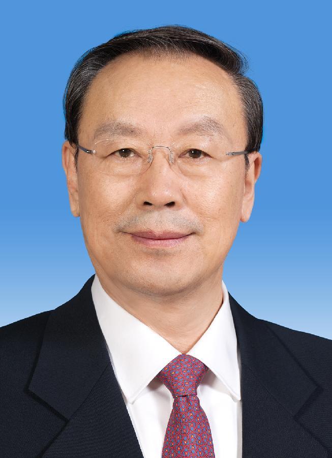 中国人民政治协商会议第十二届全国委员会副主席杜青林 新华社发